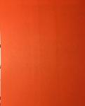ΦΩΤΟΤΥΠΙΚΟ ΧΑΡΤΙ Α4 ΙΝΚJΕΤ 160GR 250 Φ ΣΚ ΠΟΡΤΟΚΑΛΙ